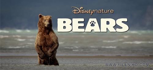 bears - دانلود مستند خرس ها Bears 2014 با زیرنویس فارسی