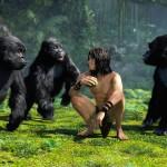 دانلود انیمیشن Tarzan تارزان دوبله فارسی +دو زبانه انیمیشن مالتی مدیا