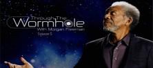 Through The Wormhole Season 5 222x100 - دانلود مستند Through the Wormhole Season 5 درون کرم چاله ها با زیرنویس فارسی