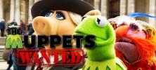 muppets 222x100 - دانلود انیمیشن Muppets Most Wanted ماپتهای تحت تعقیب زبان اصلی با زیرنویس فارسی