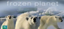 frozenplanet fileniko 222x100 - دانلود مجموعه مستند Frozen Planet 2011 سیاره یخزده دوبله فارسی