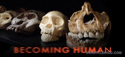 becoming human fileniko - دانلود مستند Nova: Becoming Human 2009 انسان شدن با زیرنویس فارسی