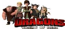 Dragons 222x100 - دانلود انیمیشن Dragons: Riders of Berk اژدها سواران برک فصل اول با دوبله فارسی