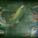 mahi01 150x150 - دانلود The New Fly Fishing Basics آموزش ماهیگیری
