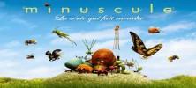 24 222x100 - دانلود انیمیشن زندگی حشرات – Minuscule کامل
