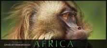مستند آفریقا Africa