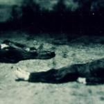 دانلود مستند WWII from Space 2012 جنگ جهانی دوم از فراز آسمان با زیرنویس فارسی مالتی مدیا مستند مطالب ویژه
