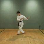 125 150x150 - دانلود فیلم آموزشی تکواندو، Osamu Inoue TaeKwonDo Training
