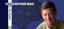 Dr. Rick Hanson 222x100 - دانلود فیلم آموزشی ذهن روشنفکر با متد دکتر ریک هانسون