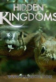 دانلود مستند Hidden Kingdoms پادشاهی پنهان حیوانات دوزبانه: اصلی+دوبله فارسی مالتی مدیا مجموعه تلویزیونی مستند مطالب ویژه