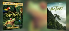 Tropical Rainforest 1992 222x100 - دانلود مستند Tropical Rainforest 1992 جنگل بارانی گرمسیری