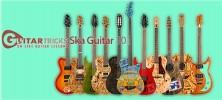 guitar 222x100 - دانلود Guitar Tricks Ska Guitar 101 فیلم آموزش تکنیک های نواختن گیتار