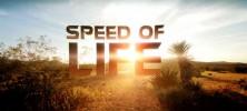speed.of .life banner 222x100 - دانلود مجموعه مستند Speed of Life سرعت زندگی با دوبله فارسی