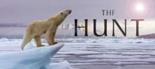 bbc hunt filenikobanner 222x100 - دانلود مستند شکار  The Hunt 2015 دوزبانه دوبله فارسی و زبان اصلی