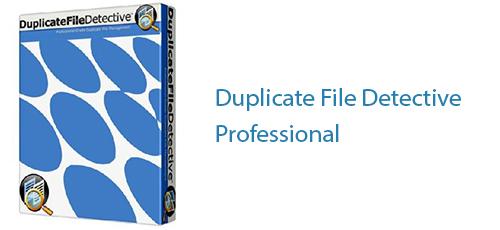 Untitled 4 1 - دانلود Duplicate File Detective Professional 6.2.52.0 حذف فایل های تکراری
