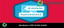 Untitled 1 72 222x100 - دانلود Udemy Modular CSS With SASS فیلم آموزشی ماژولار CSS به همراه SASS