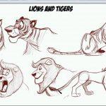 دانلود How To Draw Cartoon Animals  دوره آموزشی طراحی حیوانات کارتونی آموزش نقاشی آموزشی مالتی مدیا