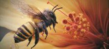 bee 222x100 - دانلود انیمیشن کوتاه Bee 2012