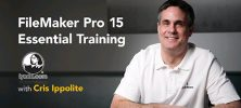 filemaker 222x100 - دانلود Lynda FileMaker Pro 15 Essential Training  دوره آموزشی نرم افزار فایل میکر پرو 15