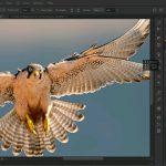 124099 00 00 WL30 Welcome.mov snapshot 00.19 2016.08.19 20.41.47 150x150 - دانلود Lynda Photoshop CC One-on-One: Mastery فیلم آموزشی فتوشاپ CC سطح حرفه ای