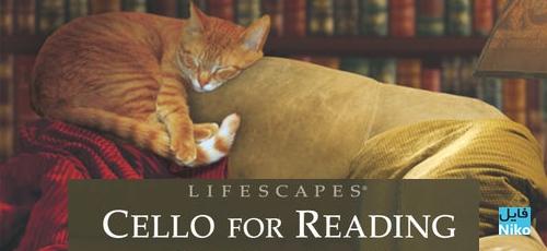 Reading - دانلود آلبوم Cello for Reading موسیقی هایی برای مطالعه اثر Daniel May