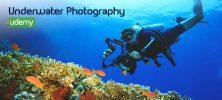 Underwater 222x100 - دانلود Udemy Photography Underwater Photography - دوره آموزشی عکاسی زیر آب