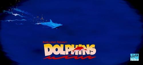 Dolphins 2000 - دانلود مستند Dolphins 2000 دولفین ها