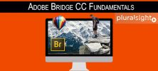 Pluralsight Bridge CC Fundamentals 222x100 - دانلود Pluralsight Bridge CC Fundamentals فیلم آموزشی ساده و عملی Bridge CC