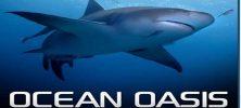 pcebanner 222x100 - دانلود مستند Ocean Oasis 2000 بهشت اقیانوس