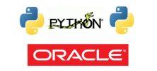 Untitled 2 10 222x100 - دانلود Udemy Python with Oracle Database فیلم آموزشی کار با دیتابیس های Oracle در برنامه های Python