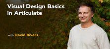 Untitled 1 22 222x100 - دانلود Lynda Visual Design Basics in Articulate فیلم آموزشی مبانی طراحی ویژوالی در Articulate