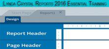 template 3 1 222x100 - دانلود Lynda Crystal Reports 2016 Essential Training فیلم آموزشی جامع Crystal Reports 2016