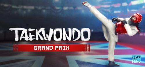 1 73 - دانلود بازی Taekwondo Grand Prix برای PC