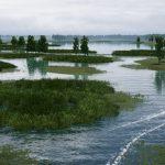 دانلود بازی Fishing Sim World برای PC بازی بازی کامپیوتر شبیه سازی ورزشی
