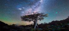 Daniel Kordan Photography Patagonia Night Sky Panorama Baobab 222x100 - دانلود Daniel Kordan Photography - Patagonia Night Sky Panorama Baobab آموزش عکاسی پانوراما از آسمان شب های پاتاگونیا