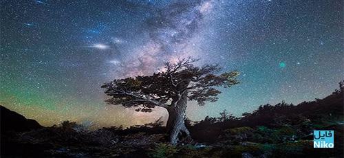Daniel Kordan Photography Patagonia Night Sky Panorama Baobab - دانلود Daniel Kordan Photography - Patagonia Night Sky Panorama Baobab آموزش عکاسی پانوراما از آسمان شب های پاتاگونیا