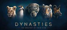 2 13 222x100 - دانلود فصل اول مستند خاندان ها Dynasties 2018 با دوبله فارسی