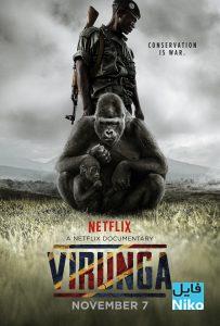1 16 203x300 - دانلود مستند ویرونگا Virunga 2014 با دوبله فارسی