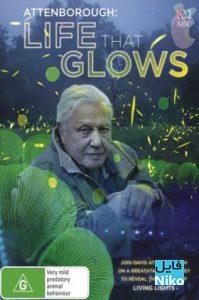 دانلود مستند حیاتی که می درخشد Attenboroughs Life That Glows 2016 با دوبله فارسی مالتی مدیا مستند