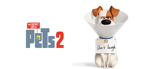 2 49 - دانلود انیمیشن The Secret Life of Pets 2 2019 با دوبله فارسی