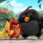 3 30 150x150 - دانلود انیمیشن The Angry Birds Movie 2016 با دوبله فارسی