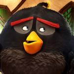4 30 150x150 - دانلود انیمیشن The Angry Birds Movie 2016 با دوبله فارسی