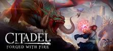 1 13 222x100 - دانلود بازی Citadel Forged with Fire برای PC