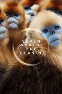 2 34 200x300 - دانلود مستند Seven Worlds One Planet 2019 هفت جهان یک سیاره با زیرنویس فارسی