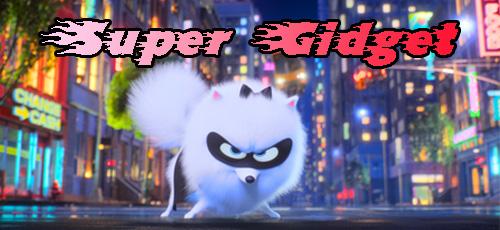 2 67 - دانلود انیمیشن Super Gidget 2019