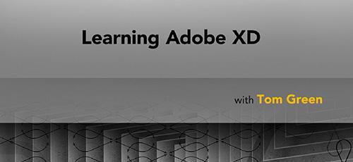 4 41 - دانلود Lynda Learning Adobe XD (2019) آموزش ادوبی ایکس دی