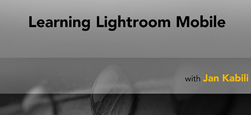 61 - دانلود Lynda Learning Lightroom Mobile آموزش نرم افزار لایت روم موبایل