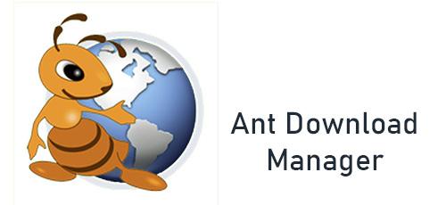 Ok 2 - دانلود Ant Download Manager Pro 2.2.2.77699 نرم افزار مدیریت دانلود