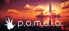 1 96 222x100 - دانلود بازی PAMELA برای PC