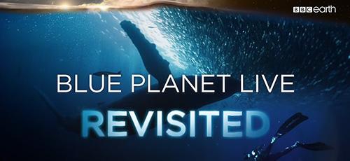 ok - دانلود مستند BBC Blue Planet Revisited 2019 ملاقات دوبارهی سیاره آبی